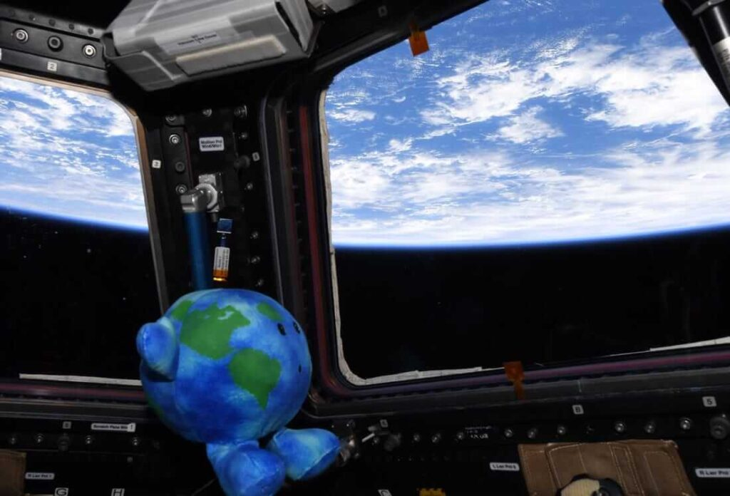 Earth plushie Buddy looks at his home planet from ISS