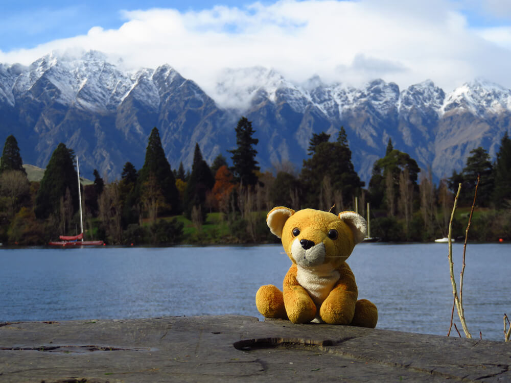 Fluffy and the snow-capped mountains of Queenstown, New Zealand