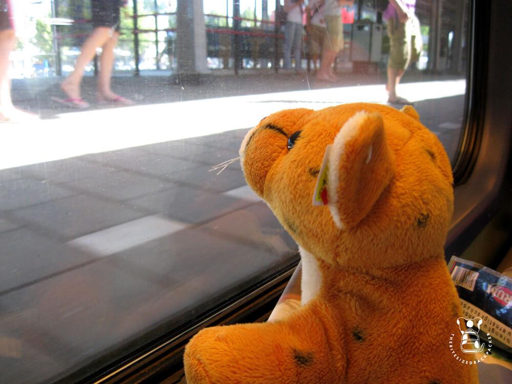 Fluffy reist met de trein tussen Ermelo en Hengelo
