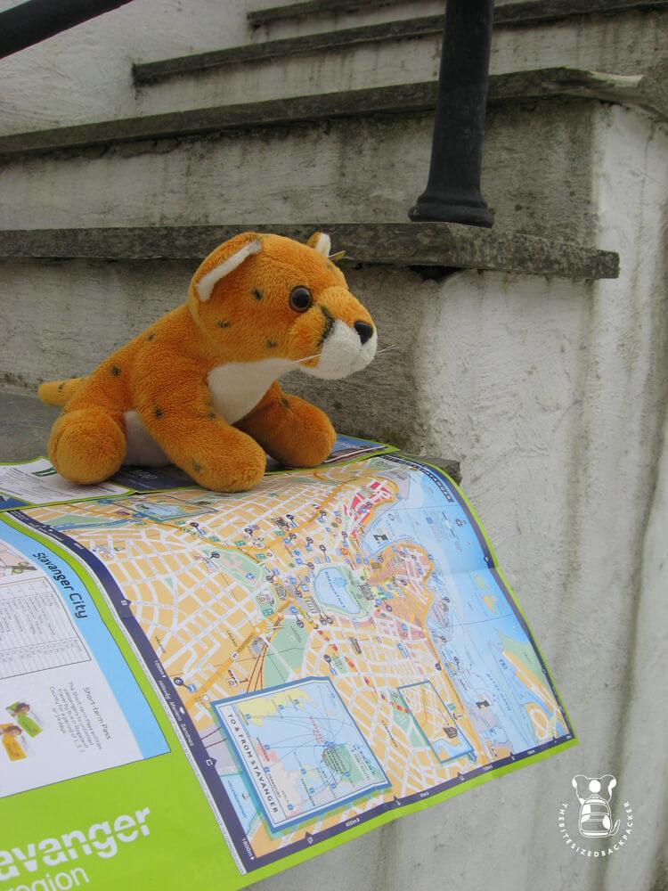 Fluffy's eerste reisje leidt hem naar Stavanger, Noorwegen