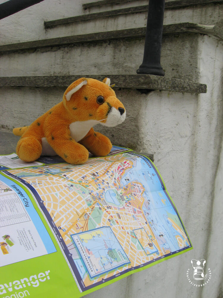 Fluffy's first trip leads him to Stavanger, Norway