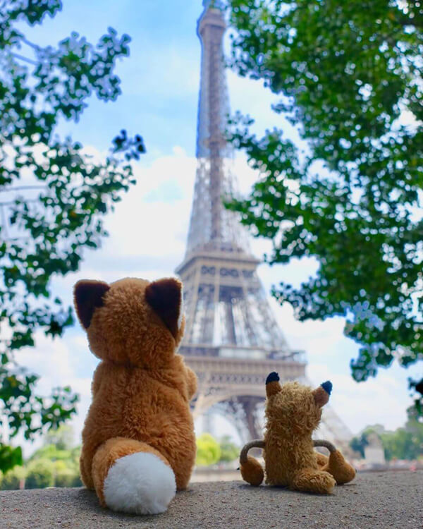 Fox plushie Kapten Fox travels to Paris
