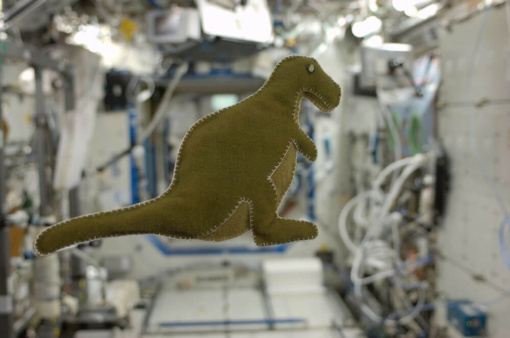 The first stuffed animal dinosaur made in outer space