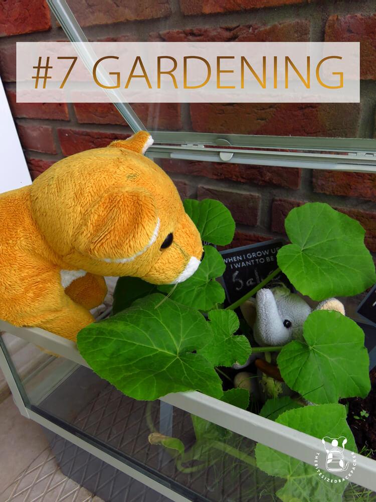 Things to do during Coronavirus lockdown 07 - Gardening