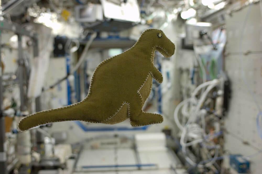 Karen Nyberg haar dinosaurus was de eerste knuffel gemaakte in de ruimte
