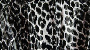 Luipaardprint in kleding