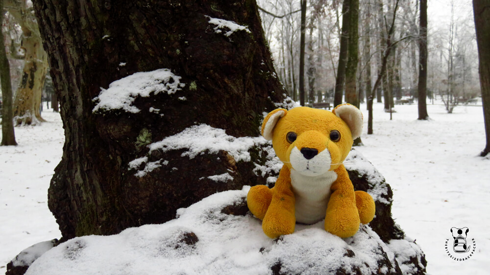 Leopard plushie Fluffy visits Parcul Central in Cluj-Napoca, Romania
