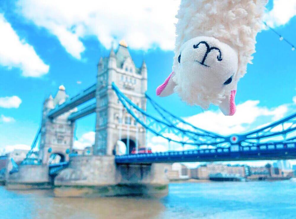 Llama plushie Llama With No Drama visits London
