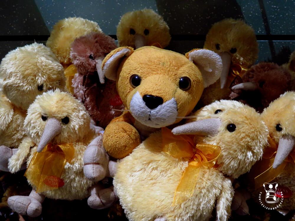 Fluffy meets Kiwis Te Anau