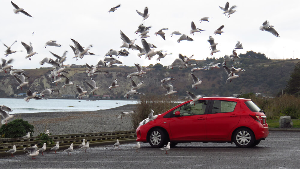 Rent a car or campervan to navigate New Zealand