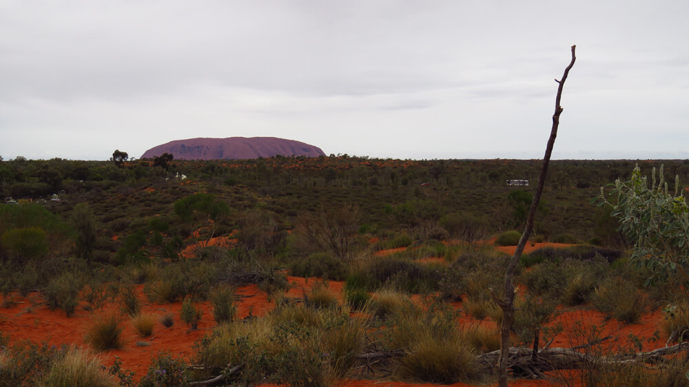 The Uluru-Kata Tjuta National Park