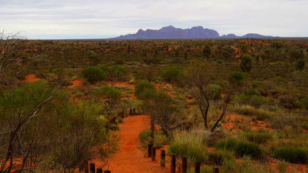 Wandelen door de Australische Outback nabij Kata Tjuta
