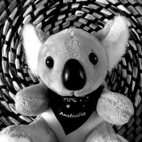 Koalaroo Jones